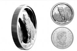 MULTILAYERED ENGRAVING COINS -  MULTILAYERED COUGAR -  2021 CANADIAN COINS 02