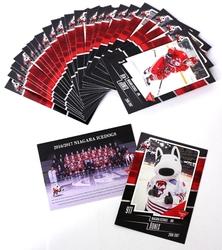 NIAGARA ICEDOGS -  (24 CARDS) -  2016-17