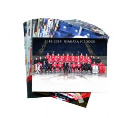 NIAGARA ICEDOGS -  (25 CARDS) -  2018-19