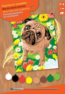 PAINT BY NUMBERS JUNIOR - PUG