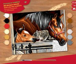 PAINT BY NUMBERS SENIOR - AT THE STABLE DOOR
