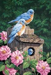 PAINT WORKS -  GARDEN BLUEBIRDS (14