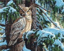 PAINT WORKS -  GREAT HORNED OWL (20