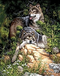 PAINT WORKS -  WILD AND FREE WOLVES (16