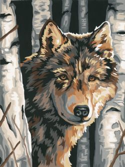 PAINT WORKS -  WOLF AMONG BIRCHES (9