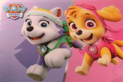 PAW PATROL -  PLACEMAT - SKYE & EVEREST