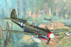 PLANE -  CURTISS P-40N WARHAWK 1/32 (MODERATE)