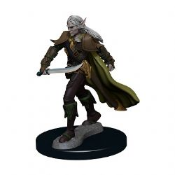 ROLEPLAYING MINIATURES -  ELF MALE FIGHTER -  PATHFINDER BATTLES PREMIUM PAINTED FIGURE