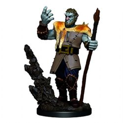 ROLEPLAYING MINIATURES -  MALE FIRBOLG DRUID -  ICONS OF THE REALMS PREMIUM MINIATURES