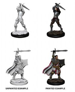 ROLEPLAYING MINIATURES -  MALE HUMAN PALADIN -  D&D NOLZUR'S MARVELOUS UNPAINTED MINIATURES