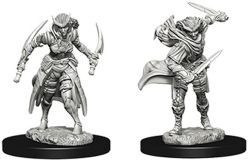 ROLEPLAYING MINIATURES -  TIEFLING FEMALE ROGUE (2) -  NOLZUR'S MARVELOUS MINIATURES