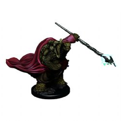 ROLEPLAYING MINIATURES -  TORTLE MONK -  ICONS OF THE REALMS PREMIUM MINIATURES
