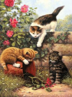 ROYAL & LANGNICKEL -  PAINT BY NUMBERS - KITTENS AT PLAY