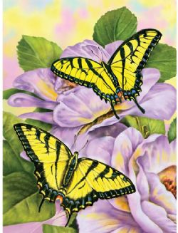 ROYAL & LANGNICKEL -  PAINT BY NUMBERS - SWALLOWTAIL BUTTERFLIES
