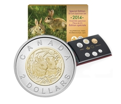SPECIMEN SETS (YOUND WILDLIFE) -  BABY RABBITS - 2014 SPECIMEN SET -  2014 CANADIAN COINS 05