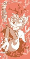 SPICE AND WOLF -