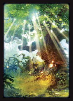 STANDARD SIZE SLEEVES -  MTG - 2018 FOREST (50)