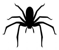 STENCILS -  SPIDERS