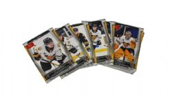 VICTORIAVILLE TIGRES -  (25 CARDS) -  2019-2020