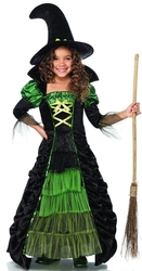 WITCH -  STORYBOOK WITCH COSTUME (CHILD)