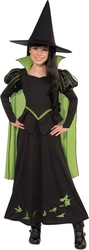 WIZARD OF OZ, THE -  WICKED WITCH OF THE WEST COSTUME (CHILD)