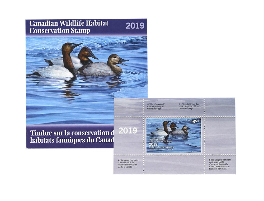 CONSERVATION DES HABITATS FAUNIQUES DU CANADA -  BLEU - FULIGULE À DOS BLANC 2019 35