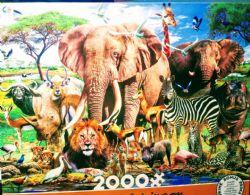 AFRIQUE -  PLAINES AFRICAINES (2000 PIÈCES)