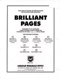 CWS MONDE -  PAGES BLANCHES (VIERGES) POIDS LOURDS (PAQUET DE 100)