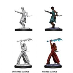 D&D MINIATURES -  FEMALE HUMAN ROGUE -  D&D NOLZUR'S MARVELOUS UNPAINTED MINIATURES