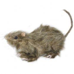 DECORATIONS -  Rat d'égout réaliste