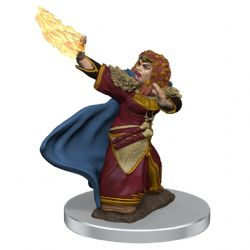 DUNGEONS & DRAGONS 5 -  FEMALE DWARF WIZARD -  ICONS OF THE REALMS