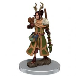 DUNGEONS & DRAGONS 5 -  FEMALE HUMAN DRUID -  ICONS OF THE REALMS