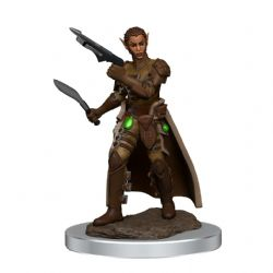 DUNGEONS & DRAGONS 5 -  FEMALE SHIFTER ROGUE -  ICONS OF THE REALMS