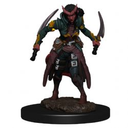 DUNGEONS & DRAGONS 5 -  FEMALE TIEFLING ROGUE -  ICONS OF THE REALMS