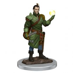 DUNGEONS & DRAGONS 5 -  MALE HALF-ELF BARD -  ICONS OF THE REALMS