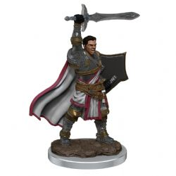 DUNGEONS & DRAGONS 5 -  MALE HUMAN PALADIN -  ICONS OF THE REALMS