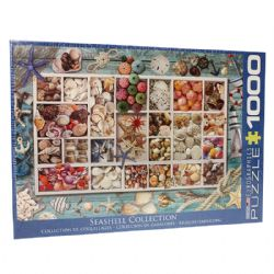 EUROGRAPHICS -  COLLECTION DE COQUILLAGES (1000 PIECES)