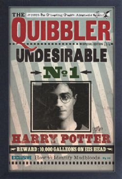 HARRY POTTER -  IMAGE ENCADRÉE -
