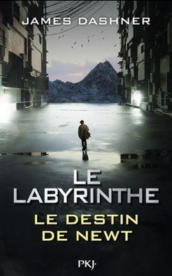 L'ÉPREUVE -  LE DESTIN DE NEWT (GRAND FORMAT) CS -  LE LABYRINTHE 06