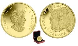 LE COUGUAR -  PORTRAIT D'UN COUGUAR FEMELLE -  PIÈCES DU CANADA 2014 03
