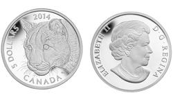 LE COUGUAR -  PORTRAIT D'UN COUGUAR FEMELLE -  PIÈCES DU CANADA 2014 05