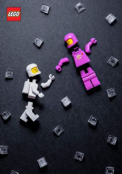 LEGO -  MINIFIGURE JOURNAL