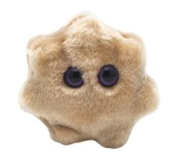MICROBES GÉANTS -  PELUCHE DE ROTAVIRUS (11 CM)