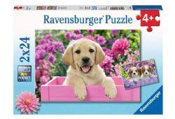 RAVENSBURGER -  AMIS TOUT DOUX (2X24 PIÈCES) - 4 ANS+