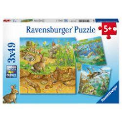RAVENSBURGER -  ANIMAUX DANS LEUR HABITAT NATUREL (3X49 PIÈCES) - 5 ANS+