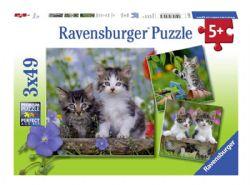 RAVENSBURGER -  CHATONS TIGRÉS (3X49 PIÈCES) - 5 ANS+