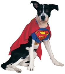 SUPERMAN -  COSTUME DE SUPERMAN (CHIEN)