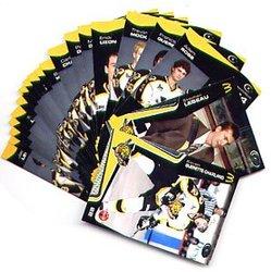 TIGRES DE VICTORIAVILLE -  (22) -  2005-06