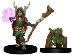 WARDLINGS -  BOY DRUID WITH TREE COMPANION